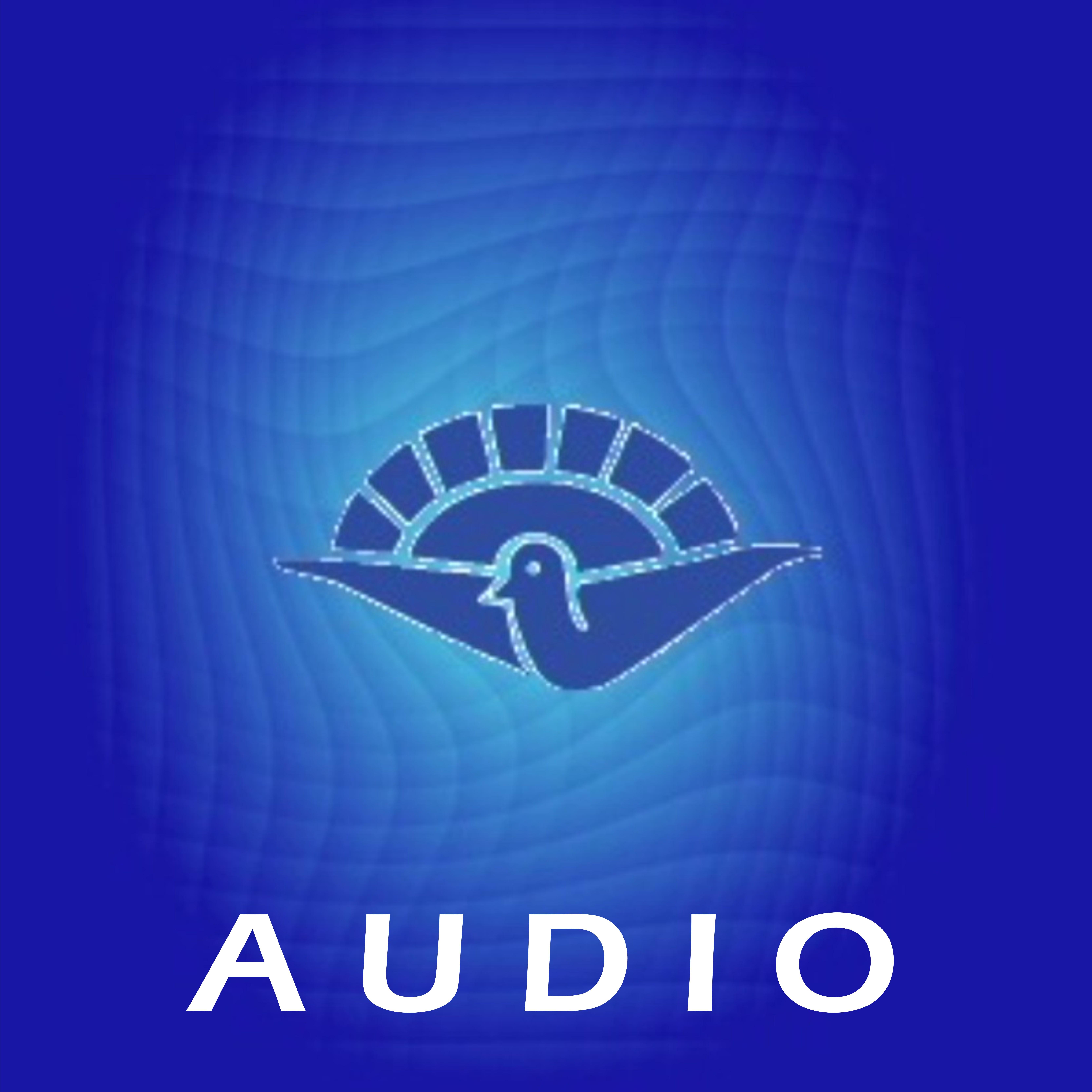 Iglesia Betel » Audio